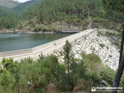 Pinares de la Angostura en Piedralaves;excursiones cerca madrid singles madrid grupos rutas faciles